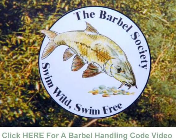 Barbel Handling Code Video